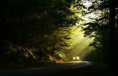 leaving the light...