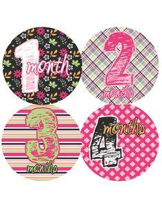 Monthly Onesie Baby Stickers  Girl Emmaline  Pinks by PurplePossom, $9.00