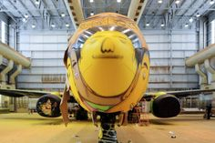 Image of Os Gêmeos Spray Paint the Brazillian National Team's Airplane