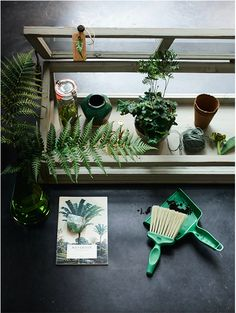 #green #botanical styling: Cleo Scheulderman photo: Jeroen van der Spek made for @vtwonen