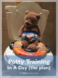 Potty Training in A Day - The Plan