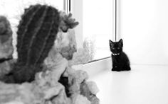 'Waiting For You' by Maria Bozina on artflakes.com as poster or art print $16.63