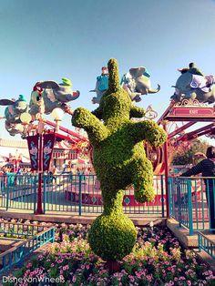 Dumbo #Disney #WaltDisneyWorld