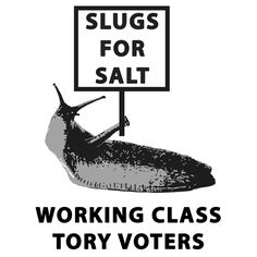 Slugs for salt!! Working class Tory voters. Political Posters, Political Art, Protest Posters, Political Memes, Right Wing, Left Wing, Working Class, Social Art, Political Spectrum