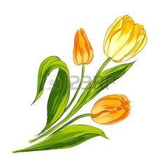 Tulip Bouquet über weißem Vektor-Illustration