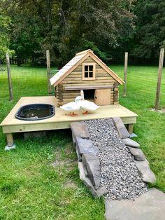 Chicken Coop Run, Diy Chicken Coop Plans, Chicken Garden, Backyard Chicken Coops, Backyard Ducks, Backyard Farming, Chickens Backyard, Duck Farming, Duck Coop