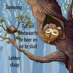 Evening Greetings, Goeie Nag, Quotes For Whatsapp, Afrikaans Quotes, Christian Messages, Good Night Sweet Dreams, Good Night Quotes, Encouragement, Sleep Well