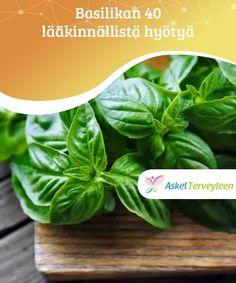 Diabetes, Spirulina, Spinach, Vegetables, Tecnologia, Allergies, Basil, Home Made, Medicine