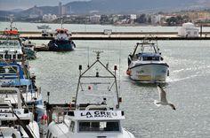 http://guias-viajar.com/ Puerto pesquero de San Carlos de la Rápita en Tarragona
