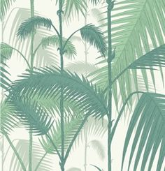 Walnut Wallpaper Palm Jungle $176/roll