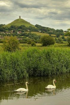 """bellasecretgarden: """"(via Glastonbury Tor, Somerset, England Somerset England, England Ireland, England And Scotland, Glastonbury England, Glastonbury Tor, England Countryside, British Countryside, Beautiful Places To Visit, Places To See"""