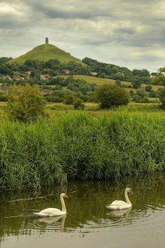 "bellasecretgarden: ""(via Glastonbury Tor, Somerset, England Somerset England, England Ireland, England And Scotland, England Uk, Glastonbury England, Glastonbury Tor, England Countryside, British Countryside, Beautiful Places To Visit"