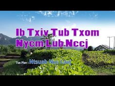 Ib Txiv Txiv Tug Txom Nyem Lub Neej. 1/22/2016