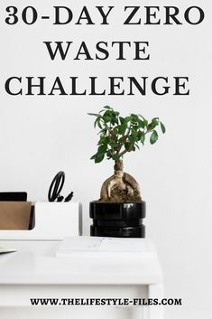 Lessons from a 30-day zero waste challenge sustainability / zero waste / simple living / eco living