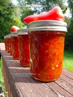 I'm doing my best to use the plethora of fresh garden produce I have in my fridge before it goes bad. I fell behind on the peppers; they were starting to sag... so I was trying to think of what to...