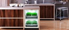Urban Cultivator is a next-generation automated kitchen garden that will allow you to fully grow and harvest the plants that you want. Find out more here...