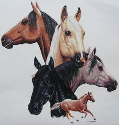 Five Horse Group on Ladies TShirt Size M L by firelandsteeshirts, $14.99