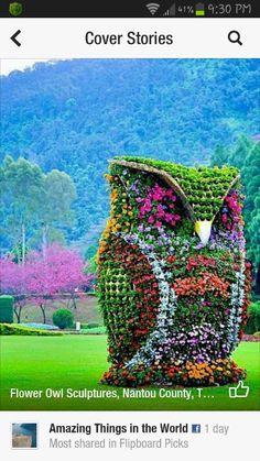 Flower owl sculpture
