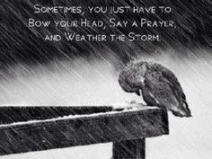 'Sometimes, you just have to bow your head, say a prayer and weather the storm.'