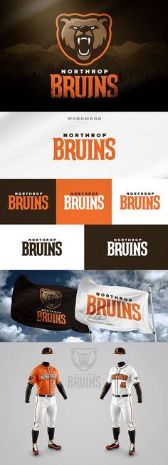 Northrop Bruins - Rebrand Concept by Wes Teska Football Team Logos, Sports Team Logos, Sports Brands, Oklahoma City Dodgers, San Francisco Giants Baseball, Team Uniforms, Cool Logo, Hockey