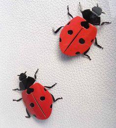 Valentine's gift, Framed Lady Bug Taxidermy, Lady Bird Shadowbox, Lucky Bug Beetle, Baby room, Nursery, by Vidogo on Etsy