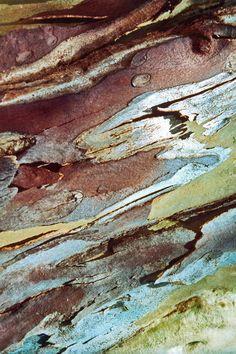 Wood Texture Background, Tree Bark, Abstract, Artwork, Painting, Design, Summary, Work Of Art, Auguste Rodin Artwork