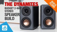The Dynamites 2-Way Budget Speaker Build - by SoundBlab - YouTube
