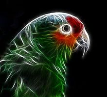 Looks like a conure in electric green.