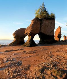 Seeing the magnificent Hopewell Rocks is an absolute must for anyone who loves nature. You can leave footprints on the ocean floor at low tide then return to kayak around the rocks after tonnes of water has rushed in. Hopewell Rocks, Canada Travel, Canada Trip, Red Sand Beach, New Brunswick Canada, Destinations, Newfoundland And Labrador, Prince Edward Island, Parcs