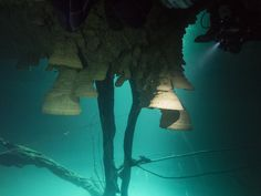 cenote Hell's Bells