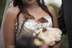 butterflies were beautiful .. and they stayed on me for gorgeous photo ops  http://www.butterflyreleases.com.au/