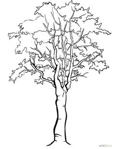How to Draw a Detailed Tree. Just about everyone has experience doodling a tree, but all it takes is a little observation and detail to draw a more realistic one. Decide whether you'd like to start with a leafy deciduous tree or a. Tree Drawings Pencil, Pencil Trees, Art Drawings, Jesus Drawings, Painting Lessons, Painting & Drawing, Watercolor Paintings, Drawing Trees, Watercolors