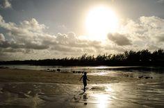 Île aux bernaches, Mauritius - http://rakesh-beedasy.com/albums/ile-aux-bernaches/