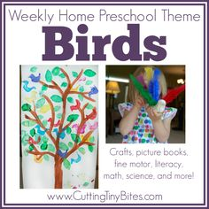 Bird Theme Weekly Home Preschool.  Crafts, fine motor, science, math, picture books, and more. EASY activities for one week of homeschool pre-k.