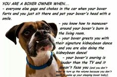 You know you're a boxer owner when....