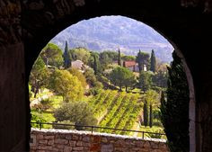 Classic Provence landscape, taken from the hilltop village of Castellet in the Var