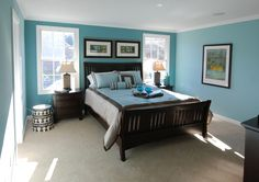 Master Blue Bedroom  with Brown Bed and White Linen - lots of color on BED AND WALLS and still looks really nice