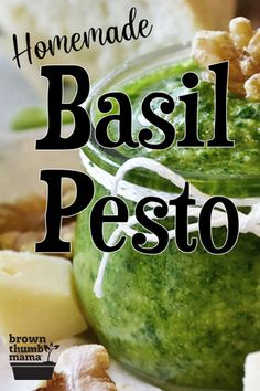 You'll love easy recipe for basil and garlic pesto with a secret ingredient that cuts the cost in half. Includes bonus recipes and freezing tips too. Try it today! #EasyRecipes #Homemade #CopycatRecipes #HealthyEating Soap Making Recipes, Canning Recipes, Homemade Wine, Homemade Food, Healty Dinner, Recipe From Scratch, Copycat Recipes, Sauce Recipes, Kitchens