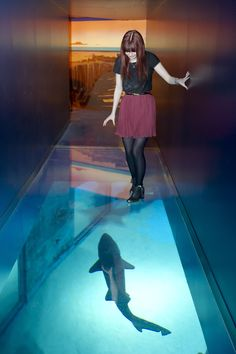Yplan is a great website that tells you about fun upcoming events in London, including our Sea Life After Dark series!