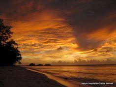 A cousin island sunset #Seychelles