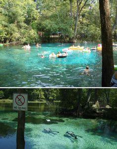 Ginnie Springs, Florida. Underwater caves, crystal clear water.