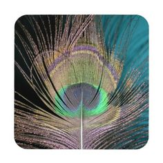 Peacock Feathers on black and turquoise Beverage Coasters