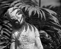 Kevin Nance, Our lady of the ferns, black-and-white photography