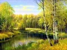 Forest serenity - Forests Wallpaper ID 1783005 - Desktop Nexus Nature