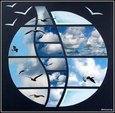 Cotentin 2012 - Goélands, mouettes et cie en vol