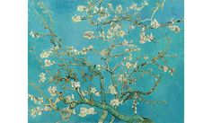 Vincent Van Gogh - Almond Blossom art poster for sale in South Africa. Art posters, fine art posters, painting posters, van Gogh poster and wall art at affordable prices with fast delivery. Van Gogh Pinturas, Vincent Van Gogh, Van Gogh Museum, Musée Van Gogh Amsterdam, Fleurs Van Gogh, Van Gogh Tapete, Van Gogh Wallpaper, Painted Wallpaper, Wallpaper Murals