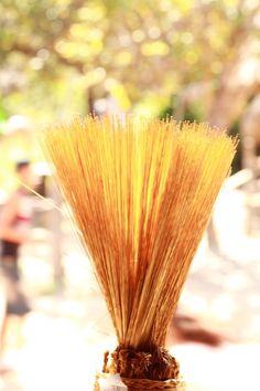 Capim dourado, colhido nas veredas do Parque Estadual do Jalapão, é usado no artesanato local. Estado de Tocantins, Brasil.  Fotografia: MACRIMM.
