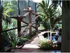 catio w water feature