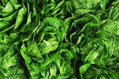 The Top 10 Healthiest Foods on Earth and How to Eat Them - Spinach is one of the healthiest foods on earth