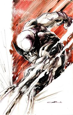 theblast:  Wolverine Slash                            by *Cinar
